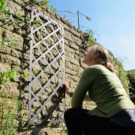 metal garden wall trellis garden wall trellis panels