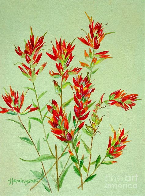 indian paintbrush tattoo indian paintbrush tattoos indian
