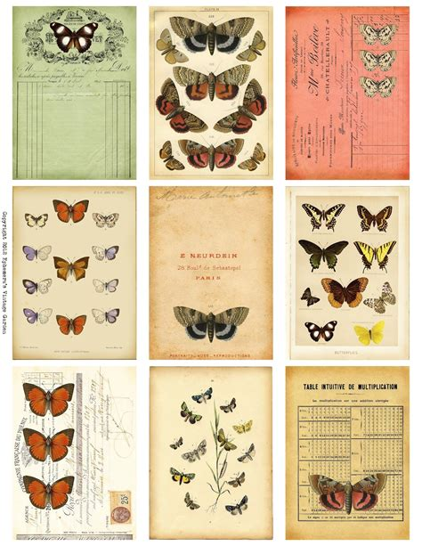 printable vintage images pinterest butterfly ephemera ephemera s vintage garden free