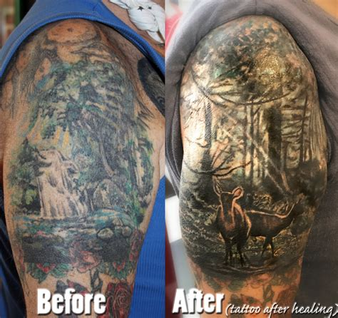 tattoo cover up healing details for stotker tattoo piercing studio in 11