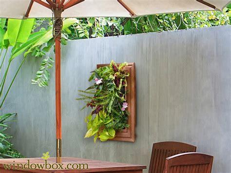 lovely Decorative Indoor Flower Pots #3: living-wall-plant-frame-traditional-b2-bg-tr8-x-wb_3.jpg
