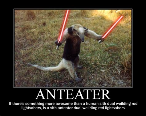 Anteater Meme - anteater motivational poster by darkman140 on deviantart