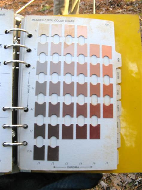 peat colour meaning i need to get a perc test for my lot what does that