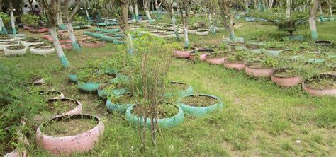jardines de llantas los jardines en llantas de hait 237 misioneros