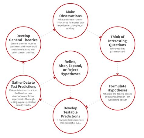 scientific flowchart scientific method flowchart create a flowchart