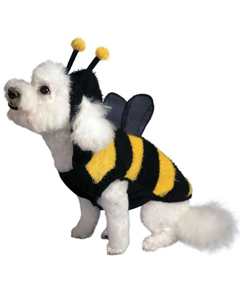 Bumble Bee L by Bumble Bee Costume For Dogs Images Beds And Costumes