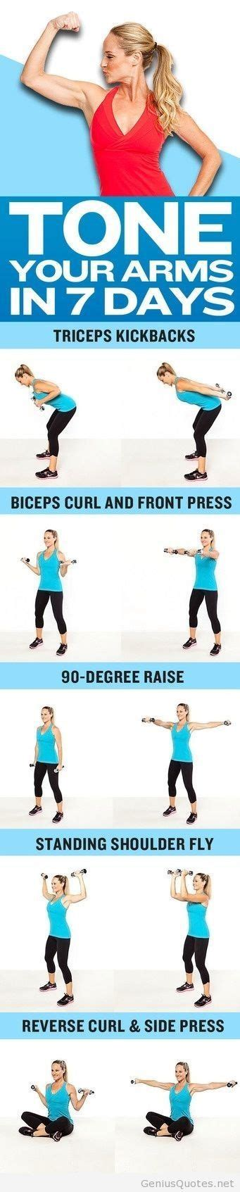 7 Great Exercises To Tone Your Arms by 1000 Images About Health And Fitness On