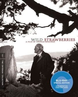 filme stream seiten wild strawberries wild strawberries criterion collection blu ray review