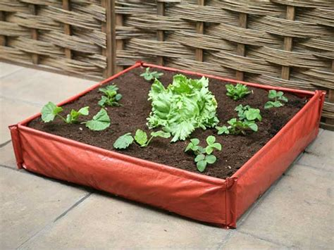 vegetable garden kits beginners vegetable garden kits raised bed with compost