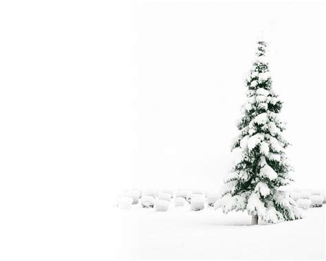 snowy christmas backgrounds wallpaper cave