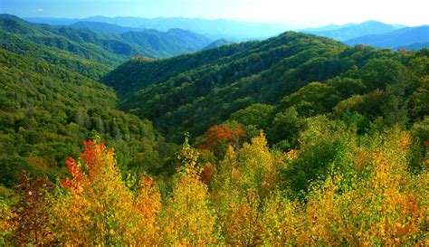 smoky mountains fall colors when do the leaves change color in the fall in gatlinburg