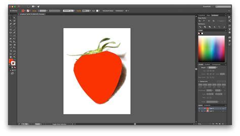 illustrator draw undo drawing in illustrator for beginners