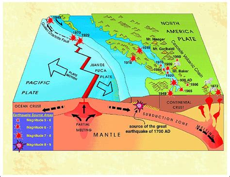 earthquake diagram earthquake diagram diagram site