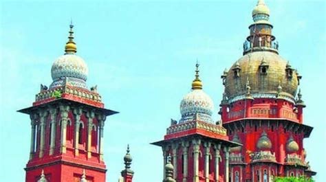 madras high court madurai bench judgements mixed response to madras high court verdict against lawyer
