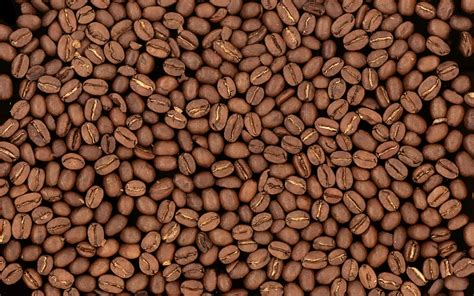 coffee bean wallpaper for walls free coffee wallpaper 16443 1920x1200 px hdwallsource com