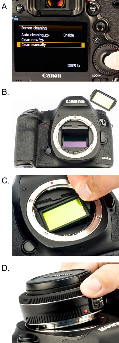 light pollution filter for nikon dslr review the astrophotography filter that deletes light