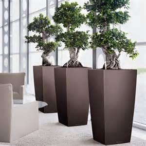 office planters amp modern indoor planters planters unlimited