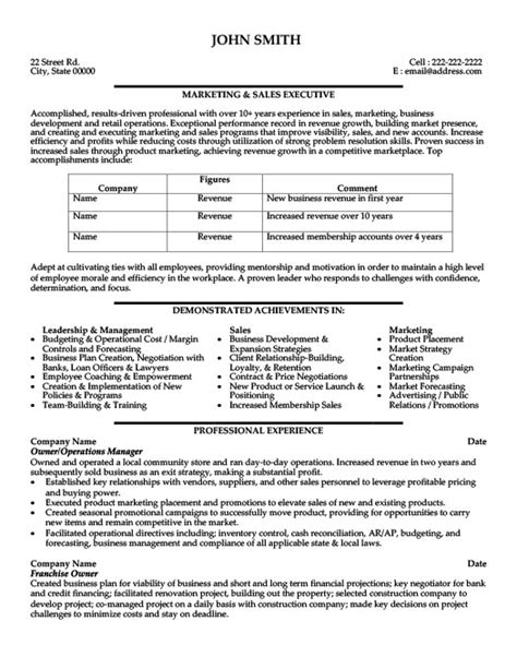 Do Vps Of Sales To An Mba by Vp Sales Business Development Resume