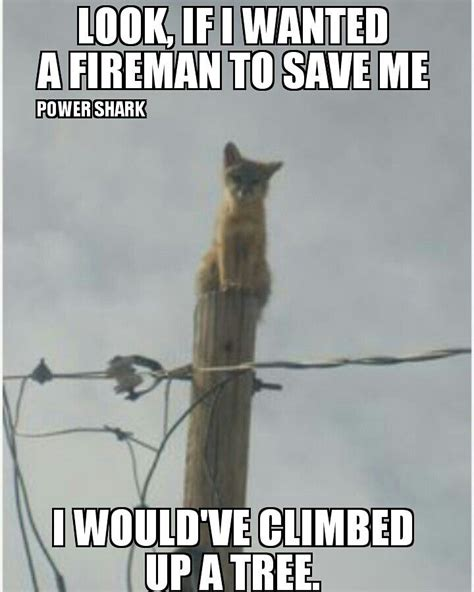 Power Lineman Memes - 17 best images about lineman on pinterest trucks