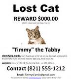 lost cat poster template free lost cat missing pet poster ms word template