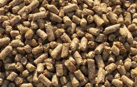 produzione alimenti per animali alimentazione per animali la cina 232 il primo produttore