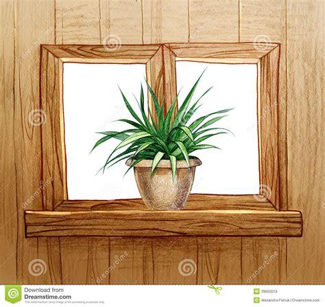 immagini di vasi con fiori finestra con i vasi da fiori illustrazione di stock