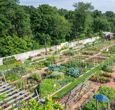 New York Botanical Garden Celebrates 125 Years Quintessence New Years Botanical Gardens