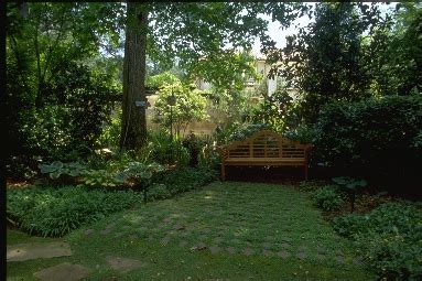 creating privacy in your backyard creating privacy in your yard with landscaping atlanta