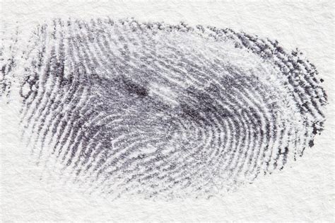 Background Fingerprint Check Finger Pointing Fingerprinting Checks Could Be Flawed