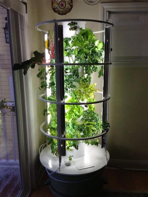 My Garden: Tower Update   Nancy On The HomeFront