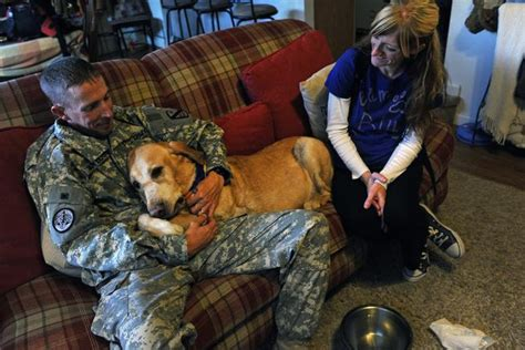 Dog Dying Of Cancer Lives To See Soldier Again And Provide