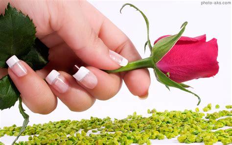 rosary from flowers طبیعت گل ها عکس گل رز