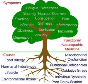 Functional Medicine The Fitter Food Approach To Pcos Fitter Food