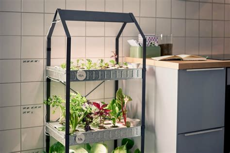 ikea hydroponics garden eight devices to help you grow a garden indoors digital