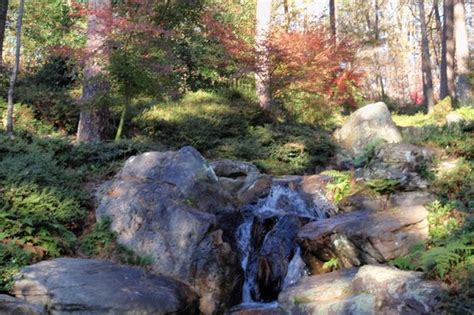 garvan woodland gardens springs ar on tripadvisor