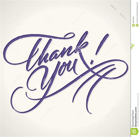 thank you lettering vector stock vector image