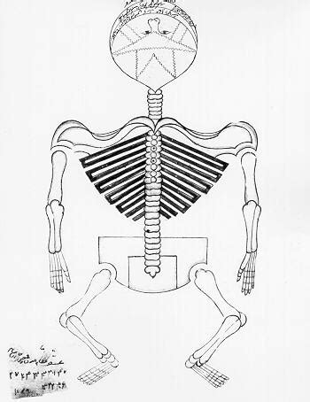 labelling with skeletal system coloring coloring pages