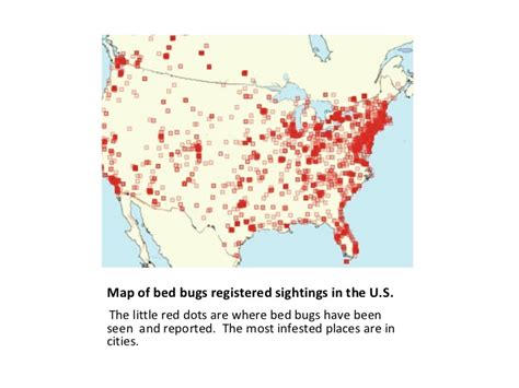 bed bug exterminator detroit bedbug images bed bug blog report get rid of bed bugs nj