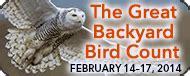 Great Backyard Birdcount by Cybils Best Stem Children S Books Of 2013 Growing With