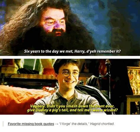 11 missing lines that should been in the quot harry