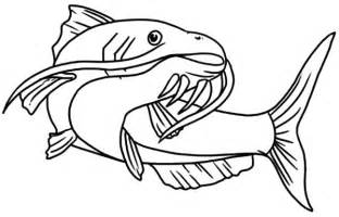 Amazing Animal Catfish Coloring Pages  Best Place To Color sketch template