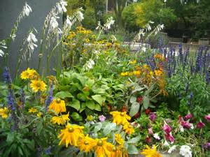 plants and flowers about flowering plants garden guides