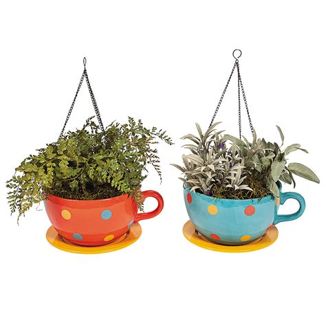 Coffee Cup Planter by Coffee Cup Hanging Planters Trading Discontinued