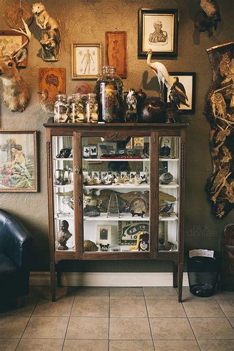 Cabinets De Curiosité by 1000 Ideas About Curio Cabinets On Curio