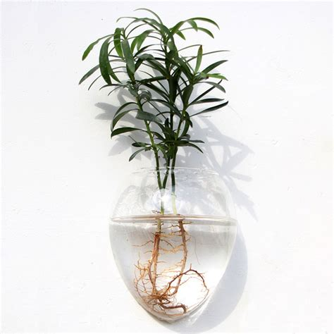 Wall Mounted Glass Flower Vases by Wall Mounted Shaped Glass Flower Vase Home Garden