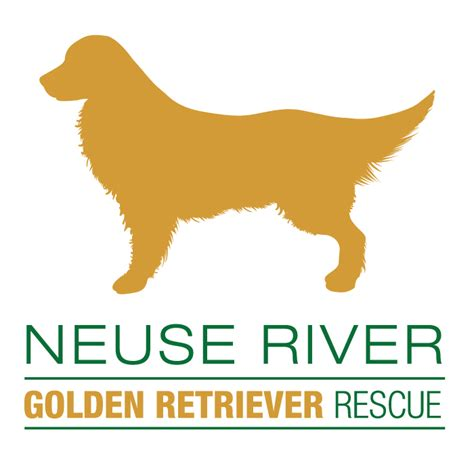 golden retriever rescue nc event day 5k presented by neuse river golden retriever rescue garner nc