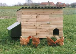 Attractive Faire Construire Sa Maison En Bois Pas Cher #13: 521_image_Kippenhok-TC.jpg
