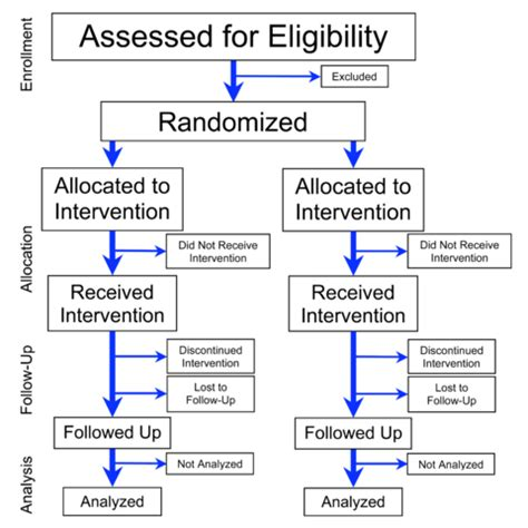File Flowchart Of Phases Of Parallel Randomized Trial