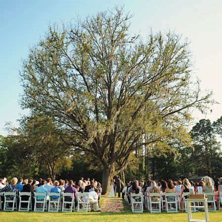 planning an outdoor wedding at home outdoor weddings guide to wedding outdoors