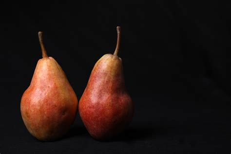 a pair of pears by meg page birnen bordeta fruits